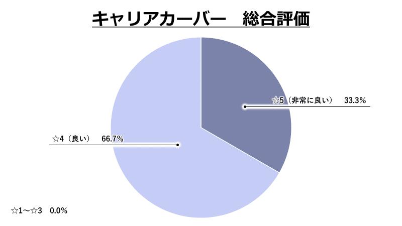 キャリアカーバー総合評価グラフ